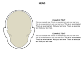 Head Neck ppt templates